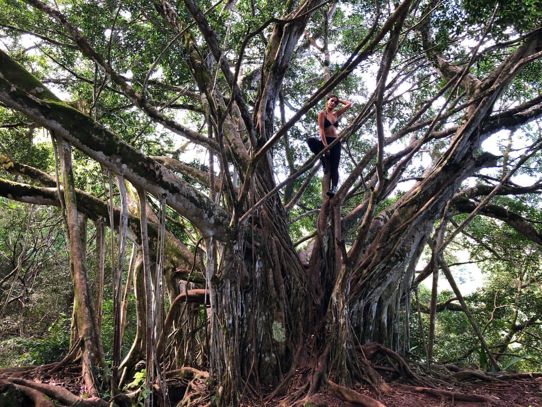 Eiza Gonzalez fait une randonnée! - Photo 5